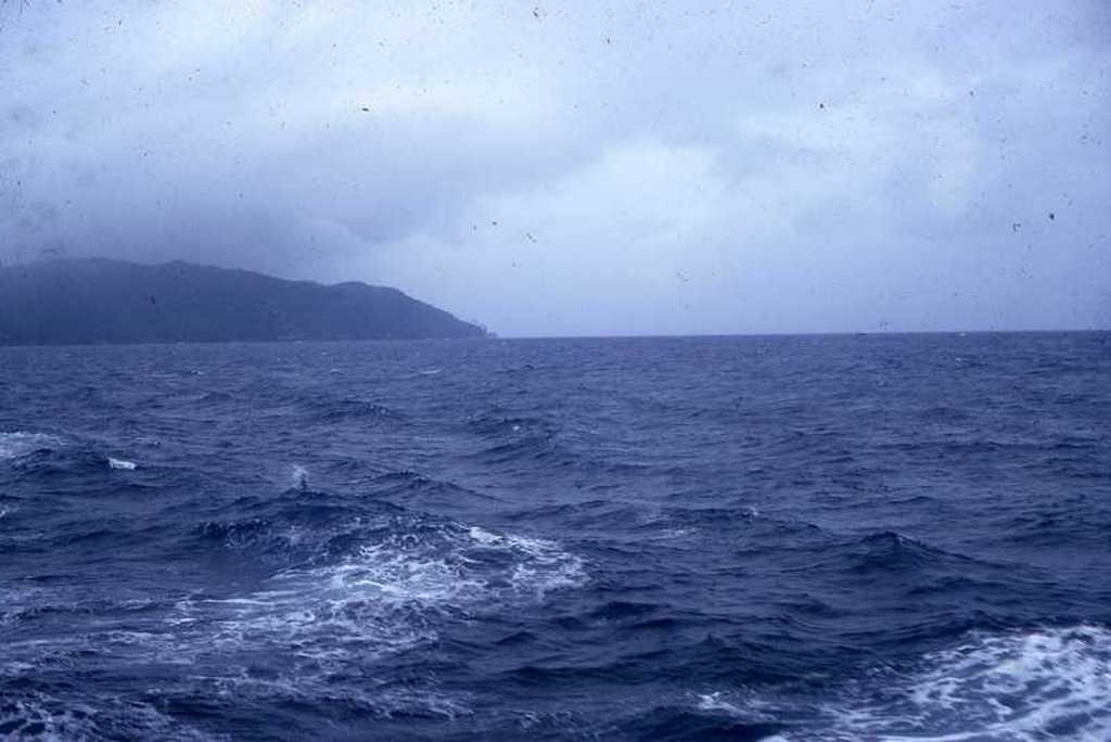 05dauphins.jpg