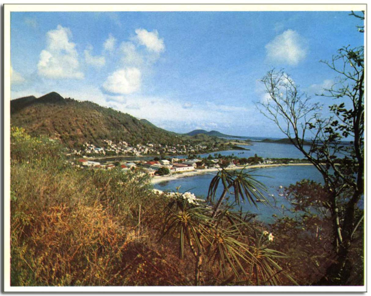 marigot001copie.jpg